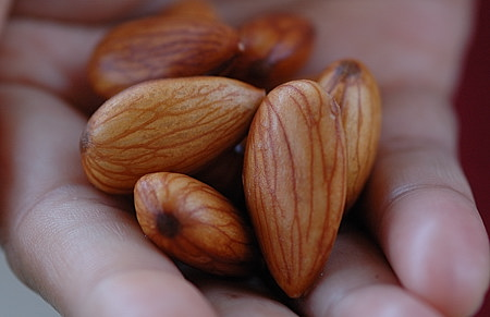 Badam (Almonds) for Breakfast