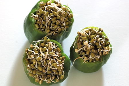 Bell Pepper Stuffed with Moong Bean Sprouts
