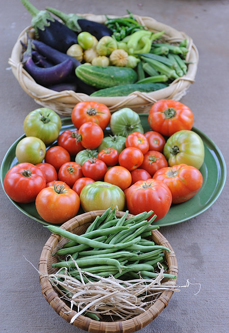 Kitchen Garden Harvest