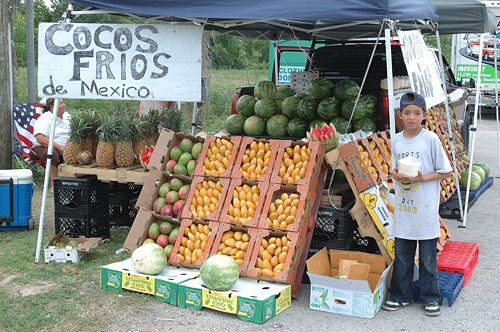 Mango Stand at Houston