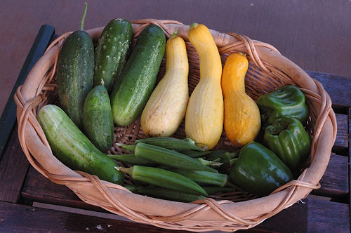 Vegetable Harvest for May 2nd Week