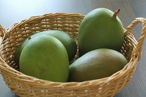 Green, Unripe Mangoes