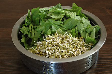 Spinach and Moong Sprouts