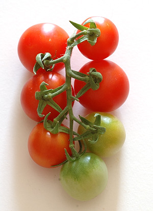 Home-grown Cherry Tomatoes