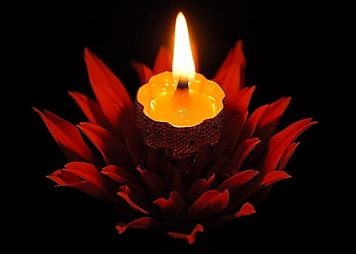 Flower Light for Shubha Deepavali